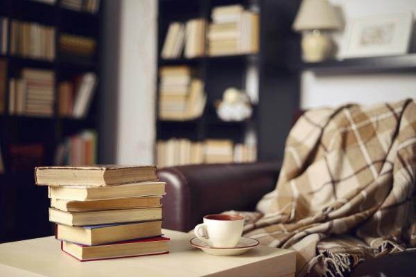 Using Books For Interior Design