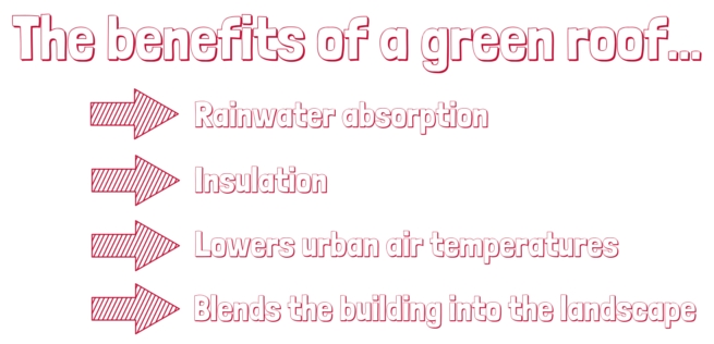 Benefits of a green roof