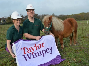 Taylor Wimpey - Pony Rescue Donation WEB