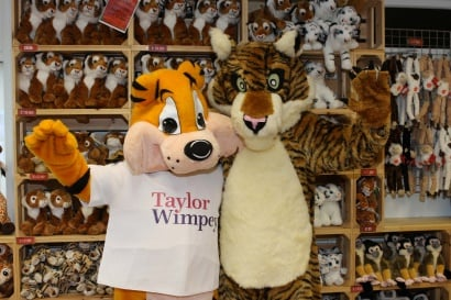 Taylor Tiger and Tala at Woburn Safari Park 2