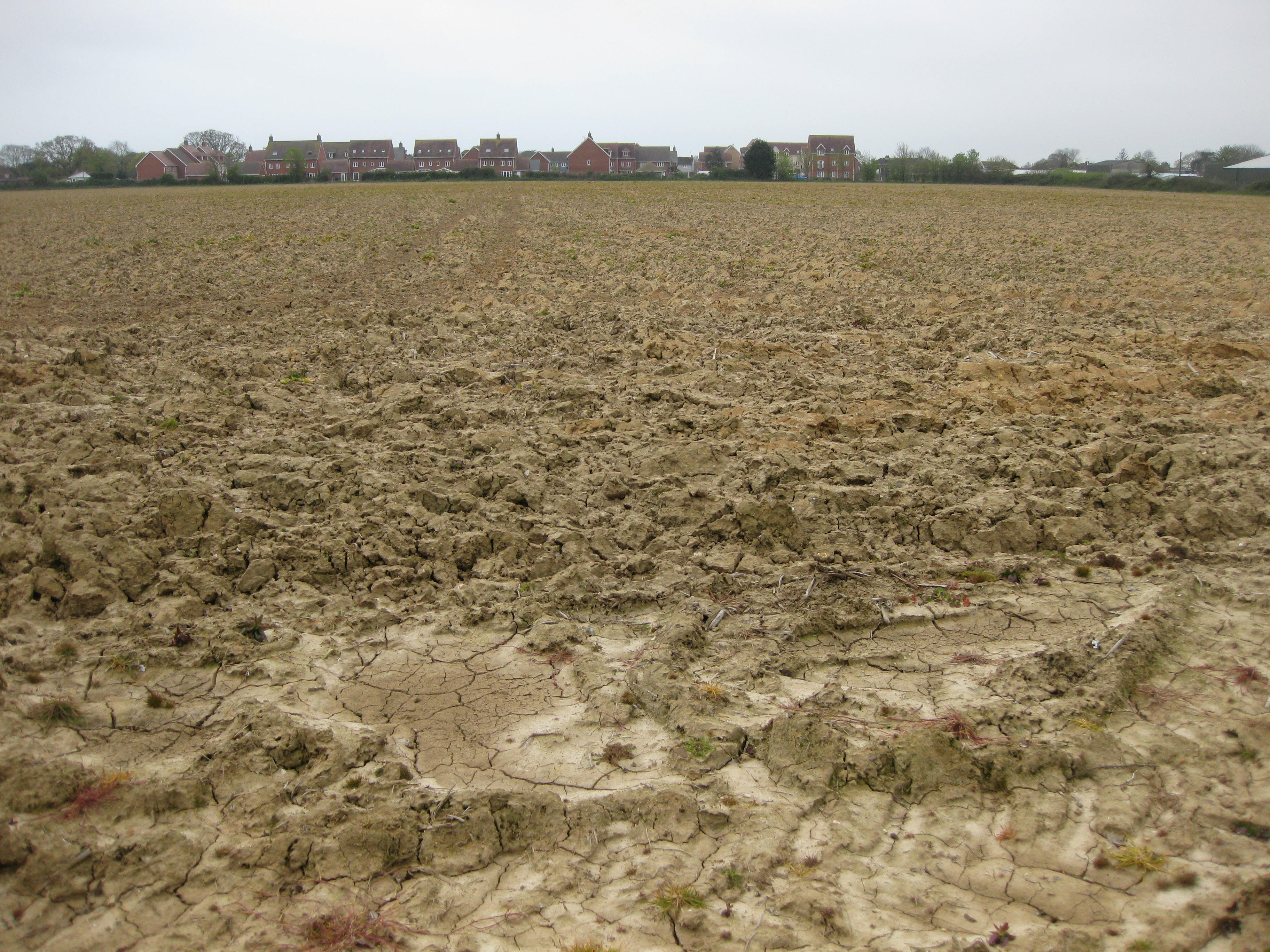 Existing arable