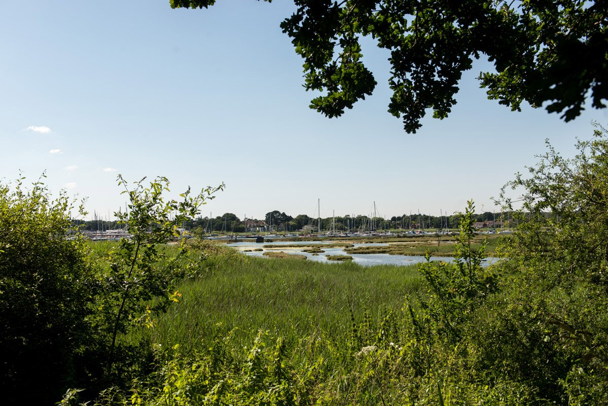 Southampton marsh to harbour view
