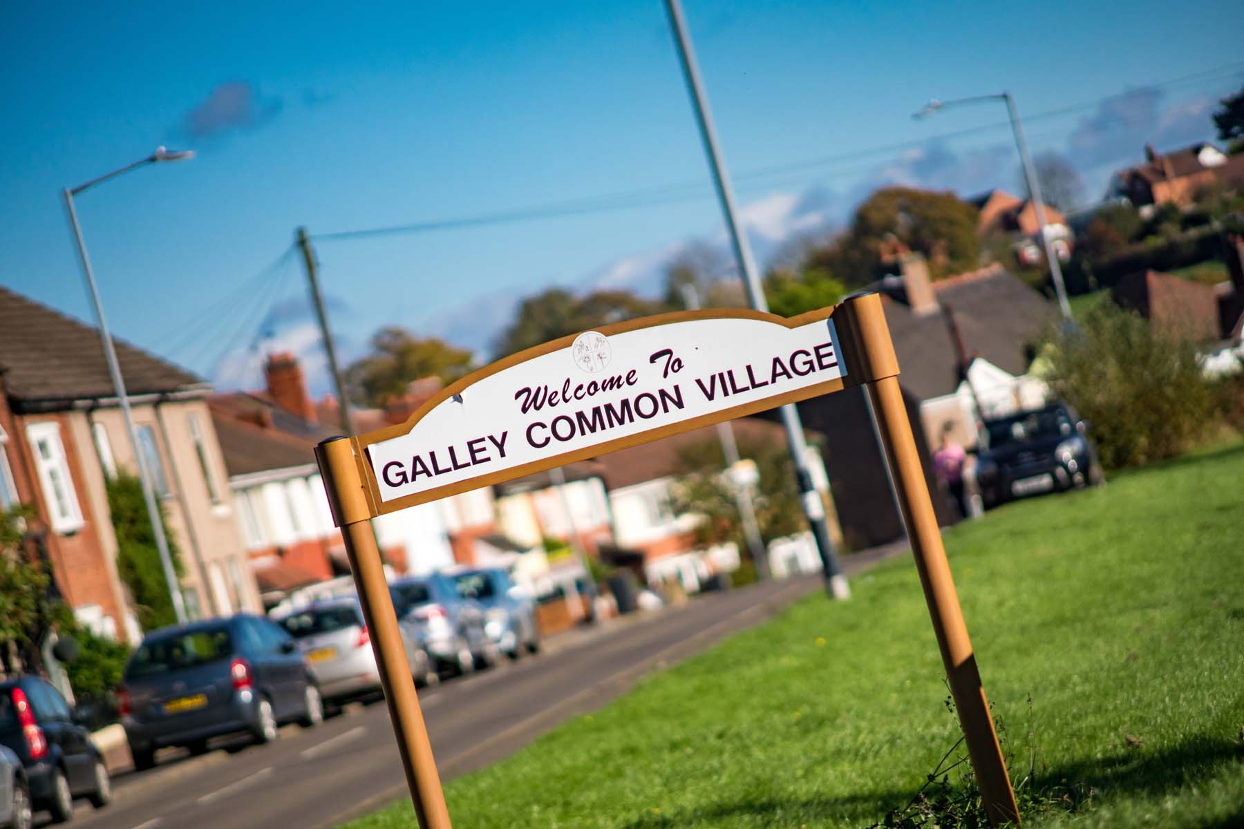 RibbonFields - Gally Common sign